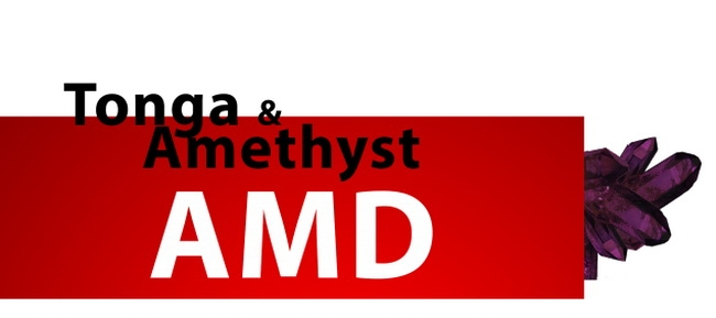 AMD ядро Tonga