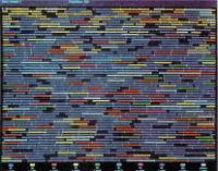Рис. 4. Цветной биомонитор